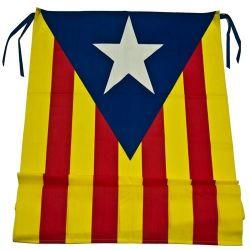 Bandera Estelada blava amb...